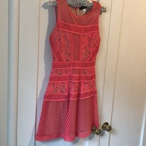 VENUS Coral lace dress
